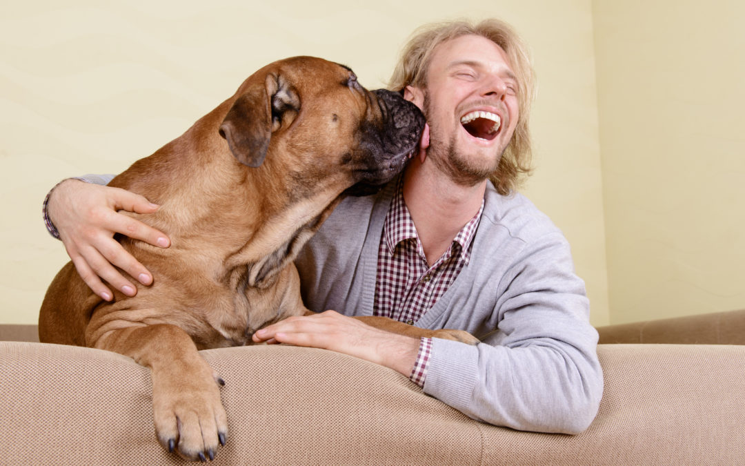 Doggy Kisses: Darling or Dangerous
